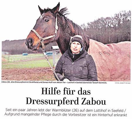 Hilfe für das Dressurpferd Zabou
