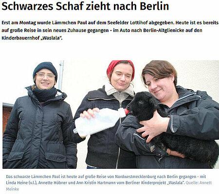 Schwarzes Schaf zieht nach Berlin
