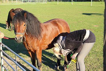 Pony Dancer mit Pflegerin Doreen Huff