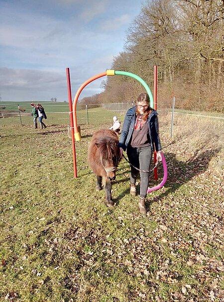 Lauf über den Pferdeparcours