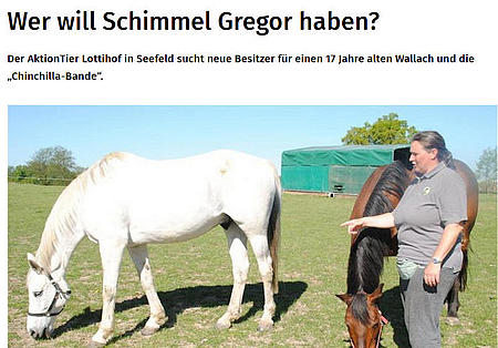 Wer will Schimmel Gregor haben?