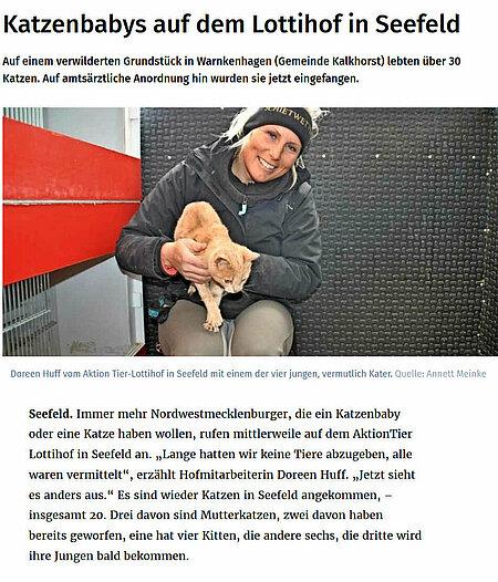 """""""Katzenbabys auf dem Lottihof in Seefeld"""""""