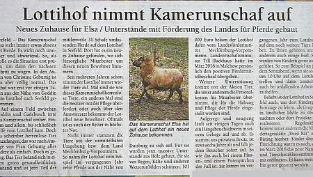 """Lottihof nimmt Kamerunschaf auf"""