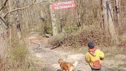 Der Hexenwald vom Lottihof